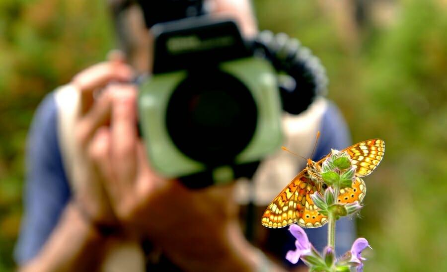 Blog de Lugarte Fotografía © Yo no soy fotógrafo