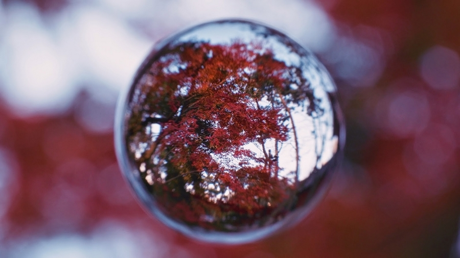 Soratama-Tokyo in the Glass Sphere.00_00_34_22.Still007